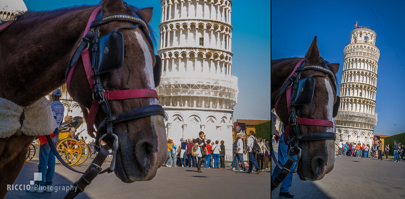 Horse carriage in front of the Tower of Pisa. Photographed by Maurizio Riccio